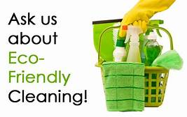 Alternatives to Household Cleaning Chemicals – GoingGreen!
