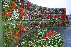 vertical garden 3