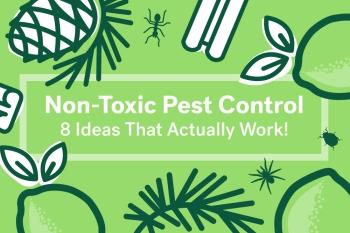 non toxic pesticides 2