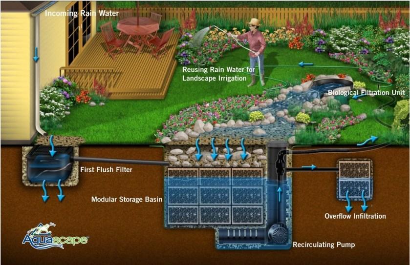 rainwater irrigation